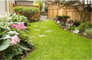 Cedar Garden Privacy Fence