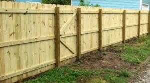 Treated Pine Fence Installation